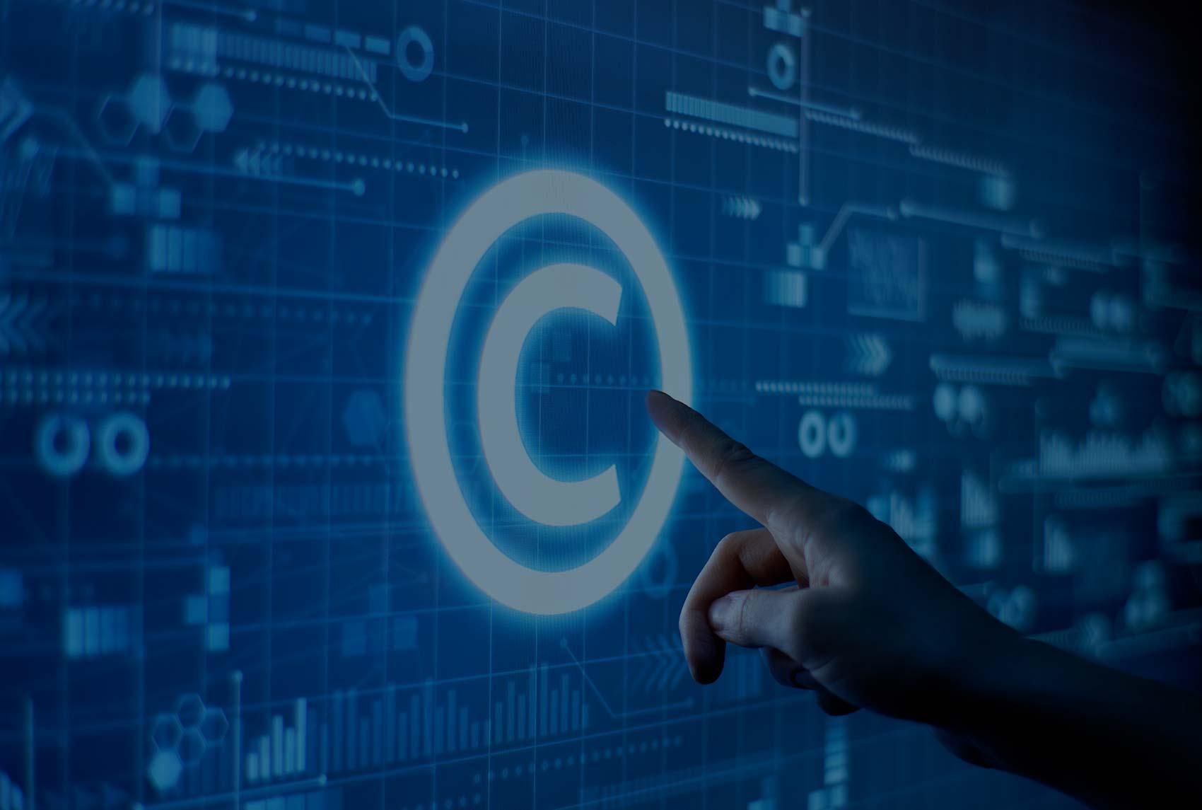 Sufinanciranje zaštite prava intelektualnog vlasništva