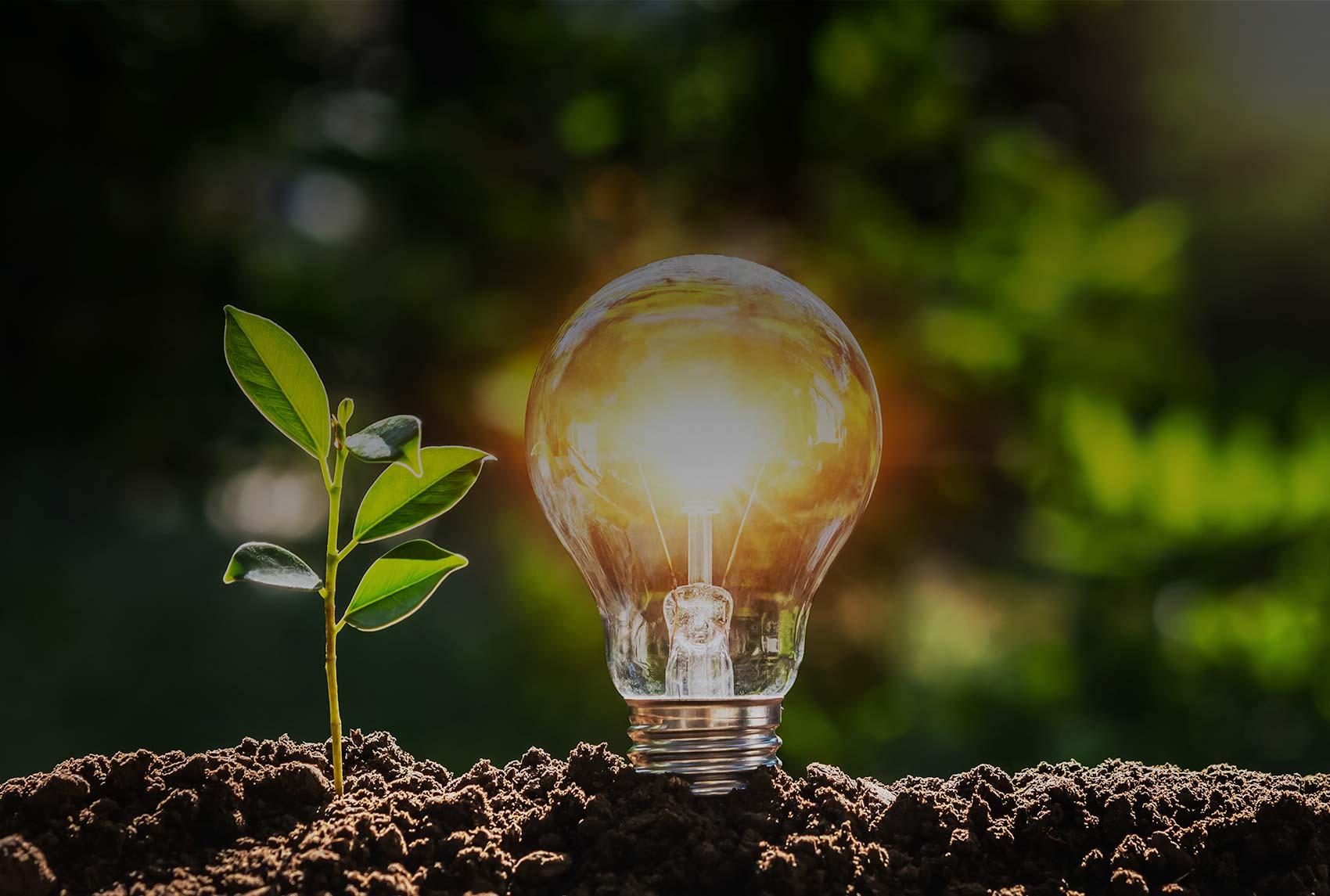 Änderungen des Energieeffizienzgesetzes und Entscheidungsfindung zur energetischen Sanierung von Mehrfamilienhäusern